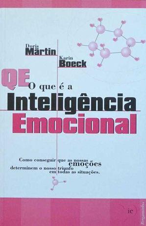 o que é a inteligência emocional MARTIN BOECK