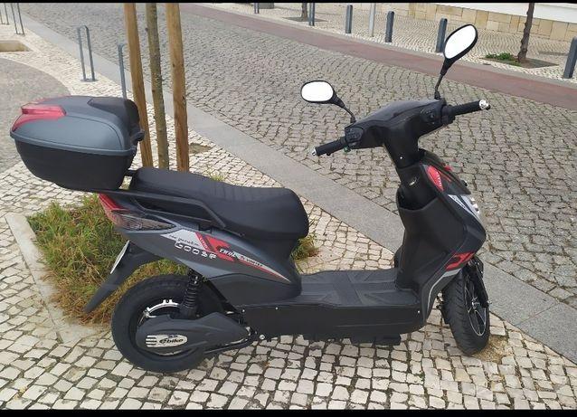 Moto Elétrica Vortex Goose