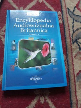 Encyklopedia audiowizualna