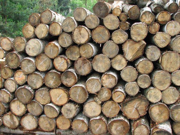 Drewno drzewo opałowe opał kominkowe dąb brzoza olcha buk