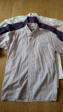 Koszula eterna razy 4 piekne