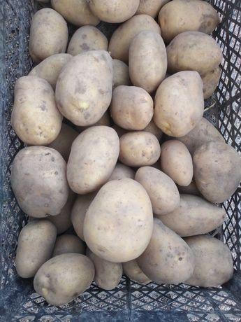 Ziemniaki frytkowe
