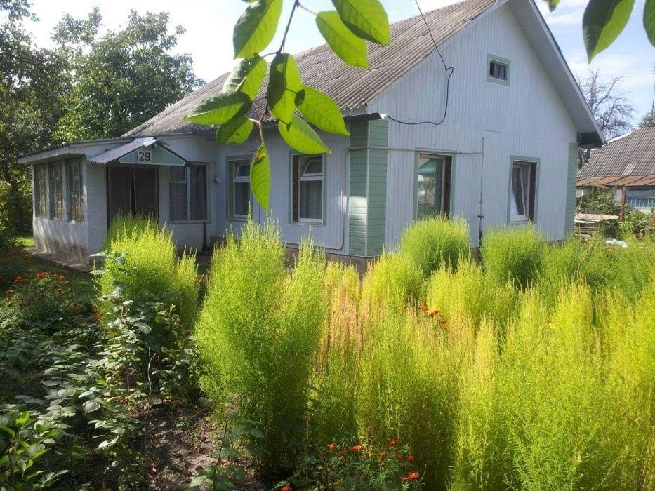 Продам теплый,деревянный дом после капремонта Мена - изображение 1