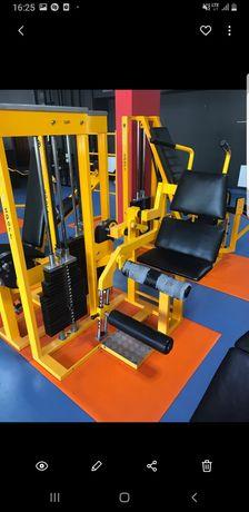 Scyzoryk maszyna na mięśnie brzucha arete sport