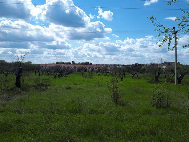 Земля аренда в Коростене