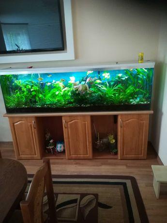 Akwarium 200cm Długości 360L