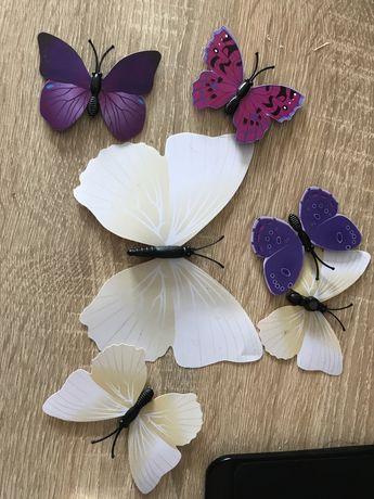 Бабочки для декора, 12 шт в наборе, магнит