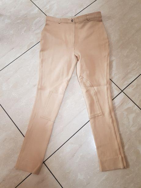 Bryczesy spodnie do jazdy konnej Harry Hall