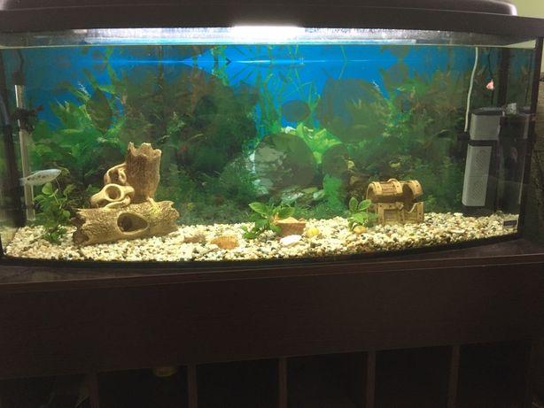 Продам акваріум 220л