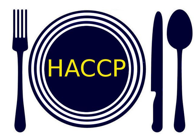 Dokumentacja HACCP, Księga HACCP/GHP/GMP