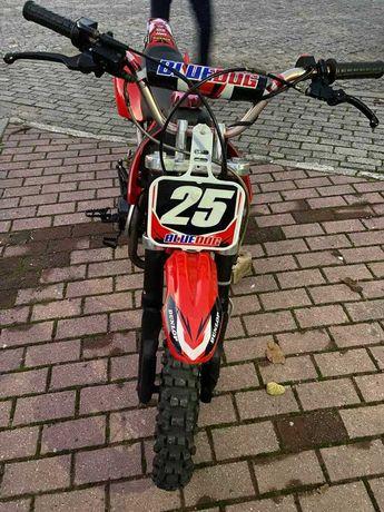 Pit-Bike 125cc      l