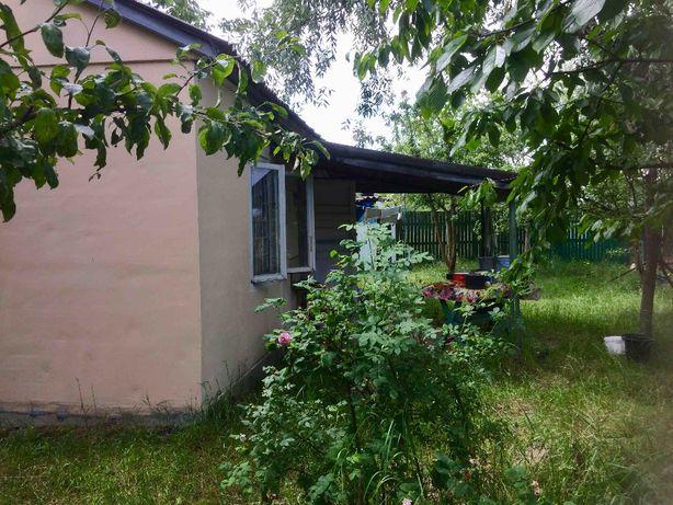 Дача с домиком и садом 11 соток с. Севериновка Житомирская трасса киев