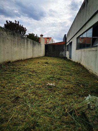 Limpeza de Terrenos e Jardins