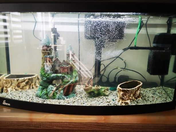 Piękne akwarium wypukłe Diversa 100L