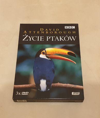 Film dvd Życie Ptaków wydanie trzy płyty