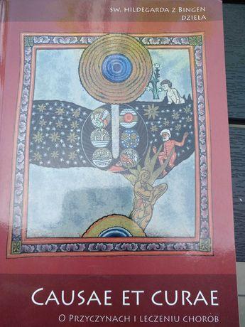 Św. Hildegarda z Bidgen. O przyczynach i leczeniu chorób