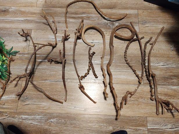 Wystrój do terarium rośliny, liany