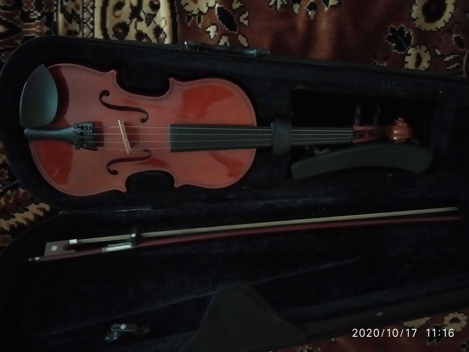 Скрипка 1/2.                    . Донецк - изображение 1