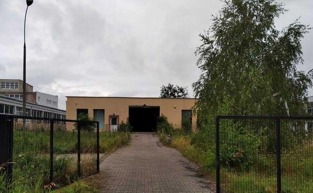 Hala-Mag_ 1024 m2_Plac utwardzony ogrodzony _Malbork_obok DK22