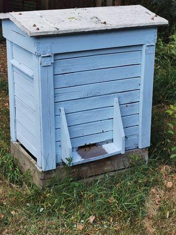 Pszczoły, okłady, rodziny pszczele z krolowa