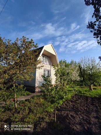 Продам загородный дом-дачу возле соснового леса!