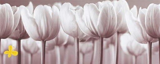 """Obraz """"Tulipany"""" ikea"""