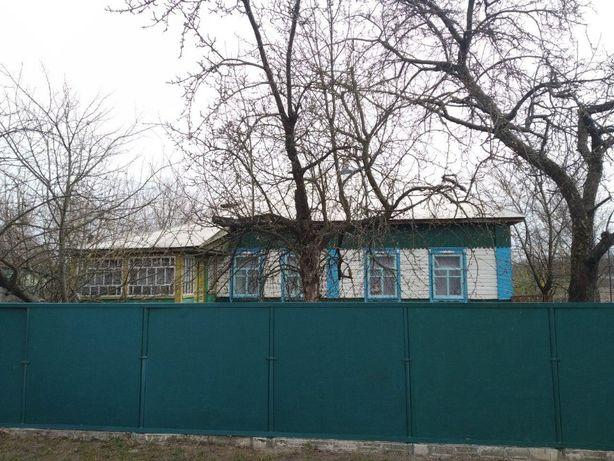 Будинок в мальовничому місті Батурин Бахмацького району Чернігівської