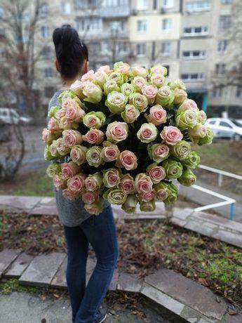Цветы Роза Эквадор