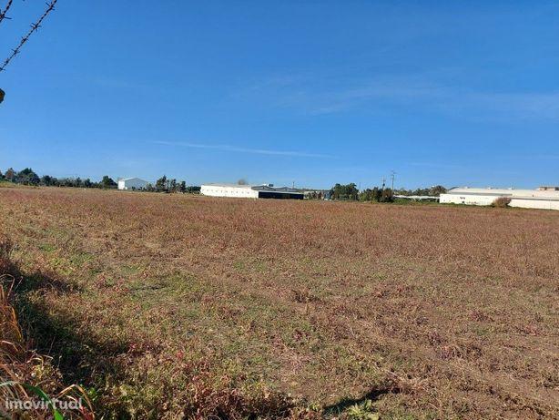 Terreno 4.15 ha   Armazém agrícola 1 508 m2   Beja