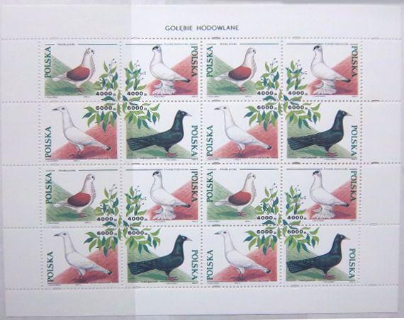 znaczki polskie, golebie hodowlane