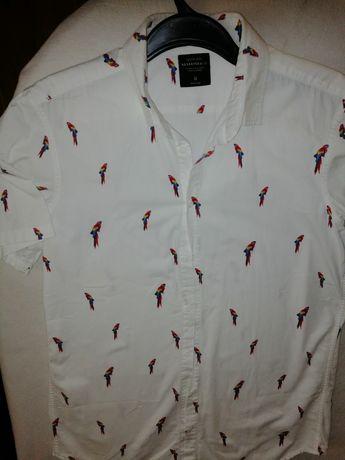 Koszule Reserved, spodnie Lee, Fjal Raven, Protest L/XL