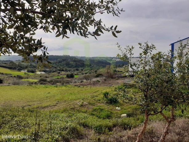 Terreno - Mafra 2km / Ericeira 7km, A Casa das Casas