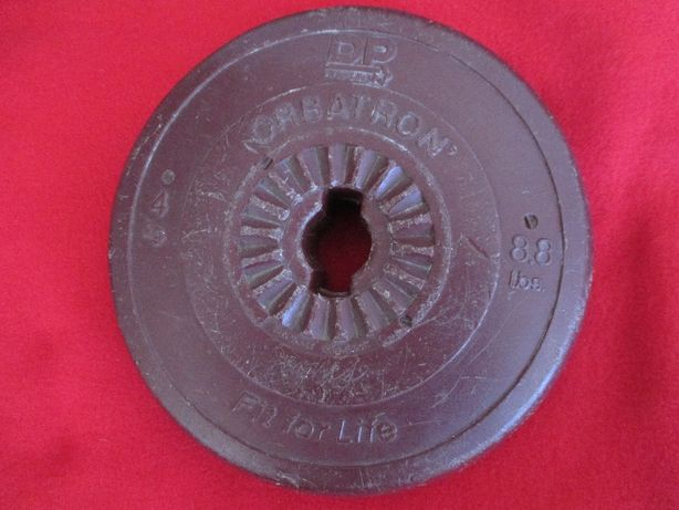 Um pesos de 4kgs DP Orbatron Fit for Life (4kg Weights)