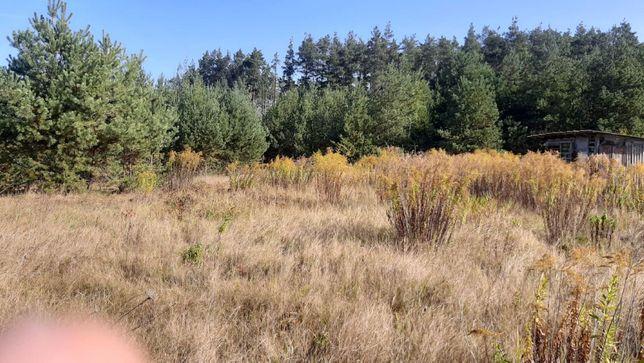 2 дачні ділянка, садовий кооператив Берізка, Вишпіль