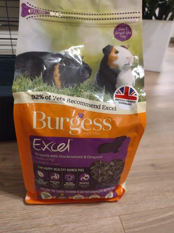 Karma Burgess Exell 2kg z oregano dla świnki morskiej