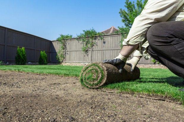 Usługi Ogrodnicze zakładanie trawników koszenie sprzątanie