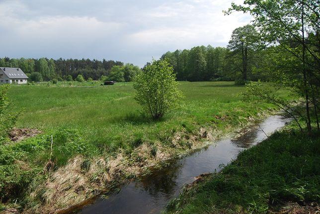 Działka budowlana blisko lasu, ogrodzenie, kanalizacja, od właściciela