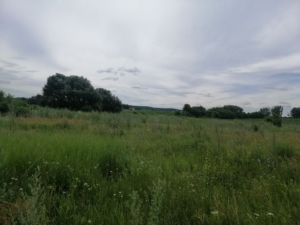 Продається земельна ділянка площею 12 соток під забудову!