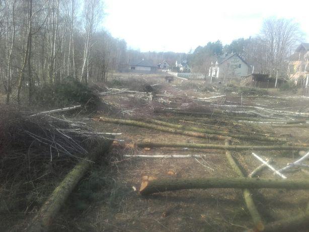 Wycinka ścinanie drzew kasowanie lasów przygotowanie terenu pod inwest