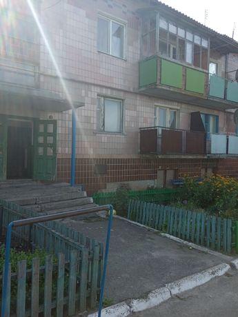 Квартира 4 кімнати с. Мартинівка