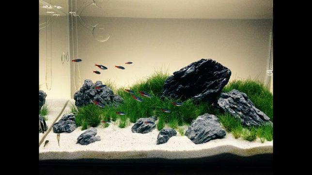 Пісок кварцевий для акваріума