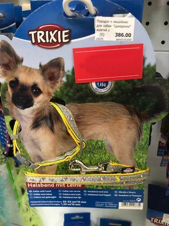 Оригинальный Trixie поводок (1 метр) + ошейник