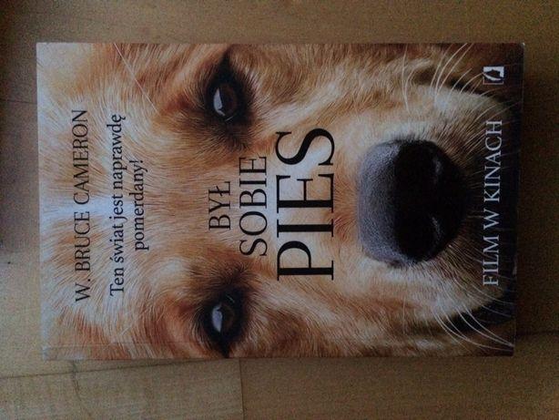 Książka dla młodzieży: Był sobie pies