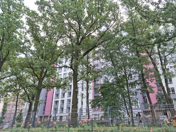Квартира с парком из окна - 61 метр!
