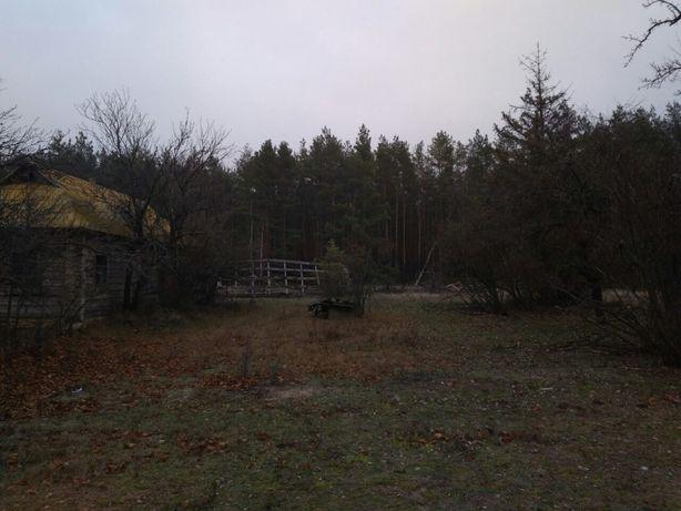 Продам участок земли в с. Рыхта. Вышгородский р-н. 21,2 сотки