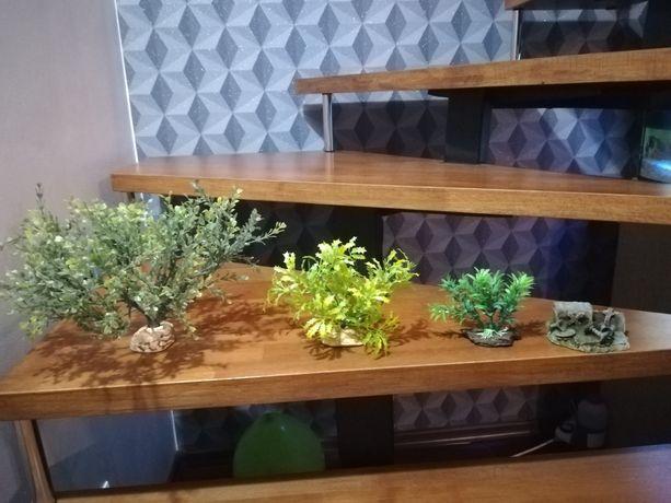 Roślinki sztuczne + skarb