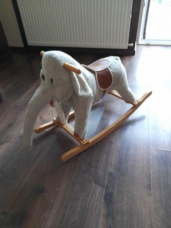 Słoń koń na biegunach dźwięk