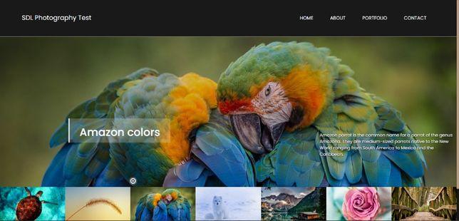 Продам сайт для фотографа, блогера/Website for a photographer