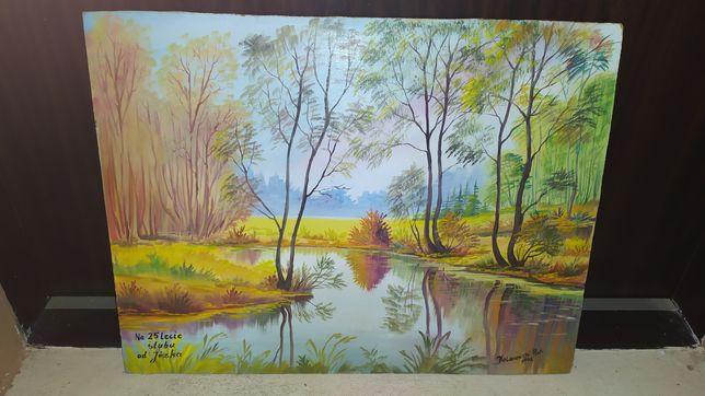 Sprzedam obraz ręcznie malowany na dykcie wymiary 50#38cm