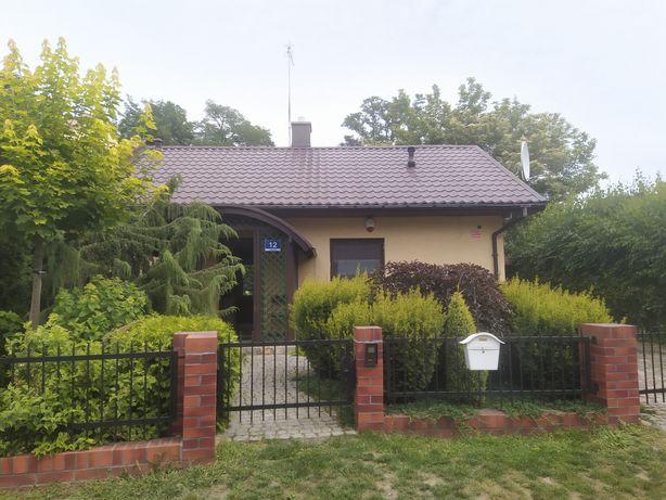 Domek całoroczny - Boszkowo